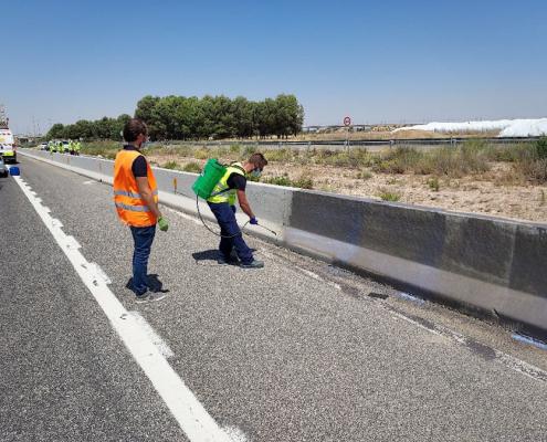Visita de la Dem. de Carreteras al Ensayo con materiales Fotocatalíticos en la A-31 en el que participa CYOPSA-SISOCIA, S.A.